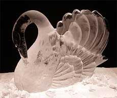 ice-swan.jpg