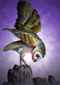owltakingflight.jpg