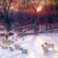 wintersday_xmas_card.jpg