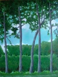 Trees-Bidston