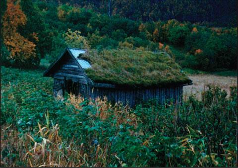 Still from Sørdal - 8min, 16mm, 2008.
