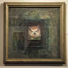 Owl   c. Tony David Roberts