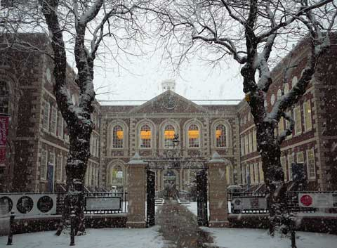 bluecoat-snow-1