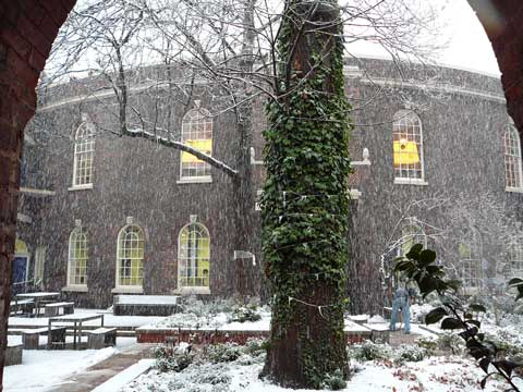 bluecoat-snow-2