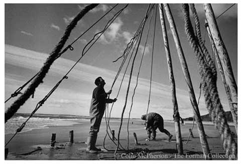 c. Colin McPherson. Salmon netters from Joseph Johnston & Co. of Montrose, constructing a stake net on the sands at St. Cyrus, Aberdeenshire, 1997