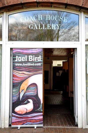 joel-bird-1