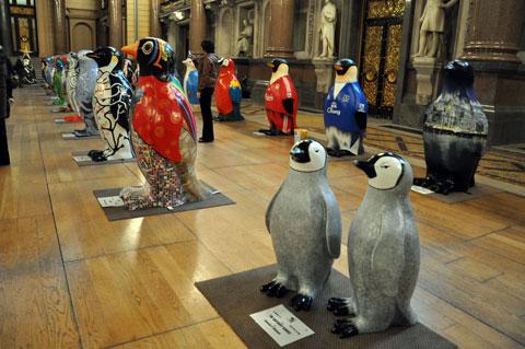 penguins-final