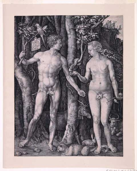 Fall of Man (Adam & Eve) by Dürer. © Hunterian Museum & Art Gallery, University of Glasgow.