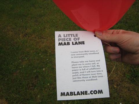 mab-lane-1
