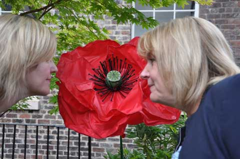 Creative Producer Jen Heyes and Councillor Wendy Simon inspect a giant poppy