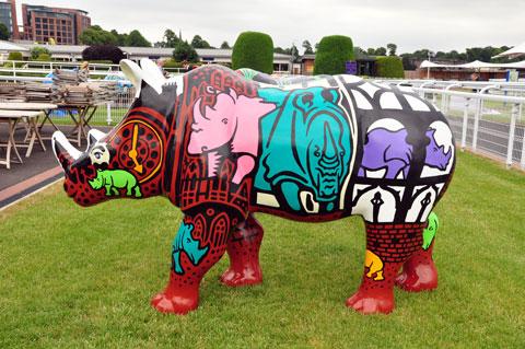 rhinos-3