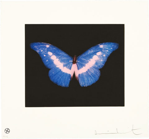 Damien Hirst 'To Belong' courtesy Art Republic