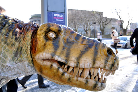 dinosaur-wml-05