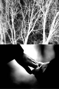 Transfigured-Night-Still-_early_development