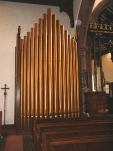 Organ image 3