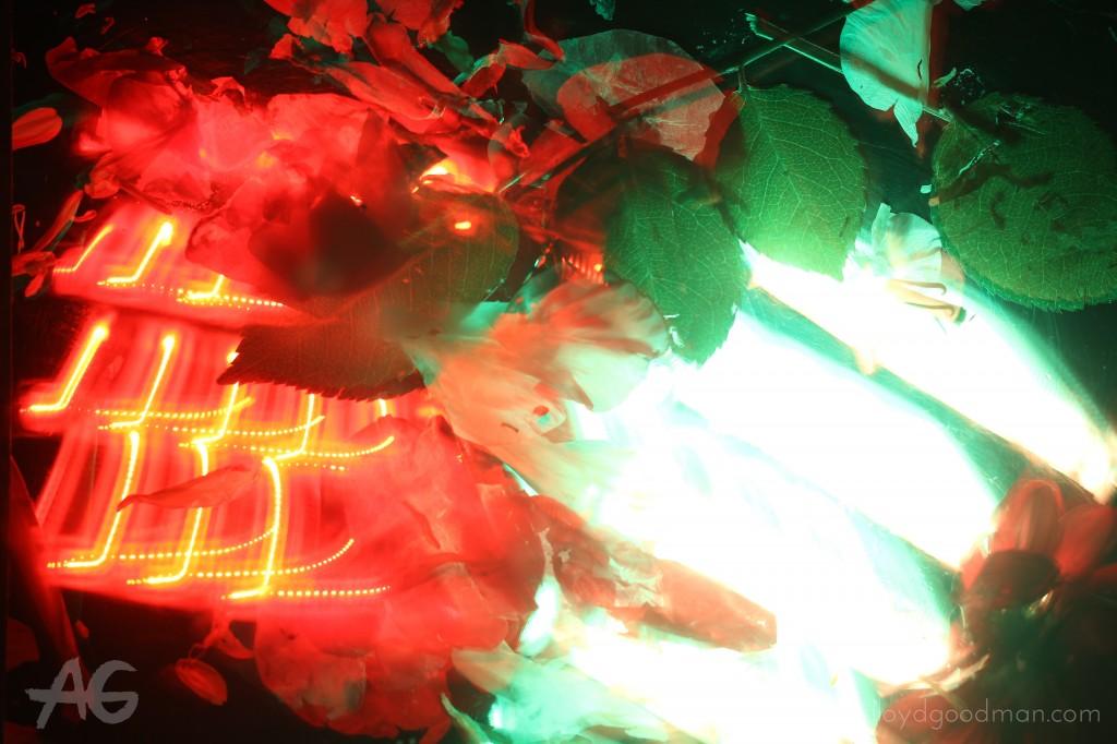 Lightsmithing by Editor Sinead Nunes