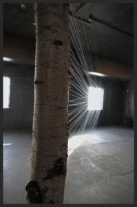 'Loci (Double Bind)' by Robyn Woolston at Threshold Festival 2013 - Photo by Robyn Woolston