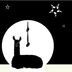 Bluecoat Display Centre: Midnight Llama