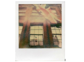 Open Eye Gallery: Emulsion lift workshop with Impossible