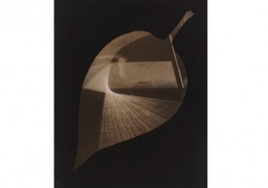 Exhiition Research Centre: Gyorgy Kepes