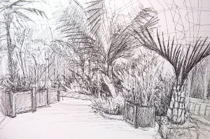 dot-art: Sketching in the Palm House