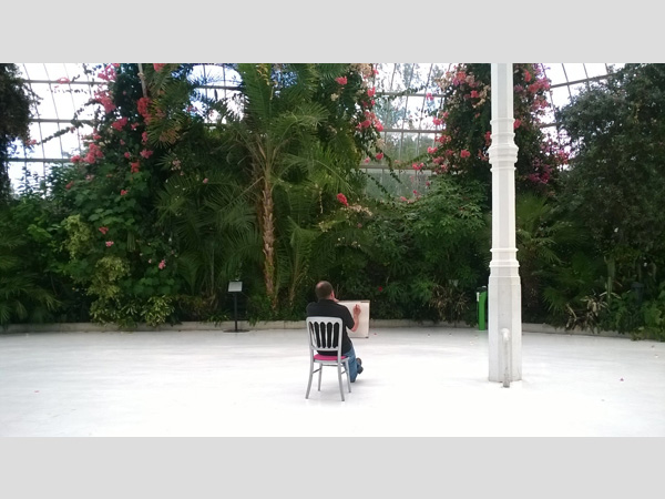 dot-art in Sefton Park: Sketching in the Palmhouse with Josie Jenkins