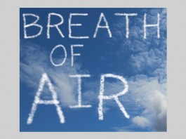 Birkenhead Park Visitor's Centre: Breath of Air by Re-View Textile Group