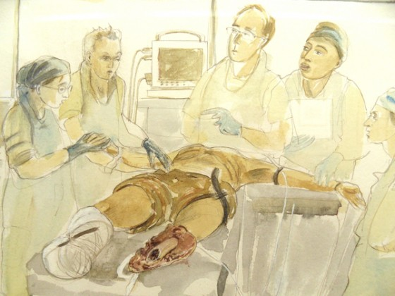 War, Art and Surgery – Julia Midgley