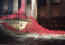 weeping window image