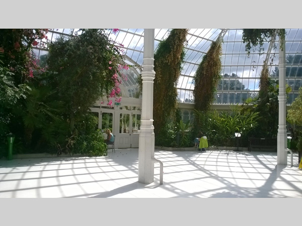 Palm House: Dot-Art: Sketching in the Palm House with Josie Jenkins