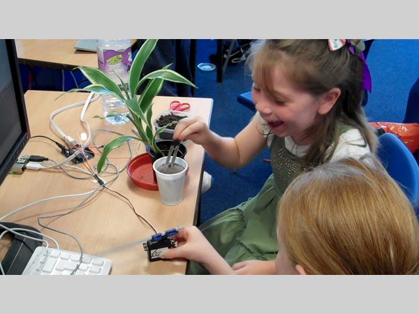 A Small Cinema: Plants & Robots Workshop
