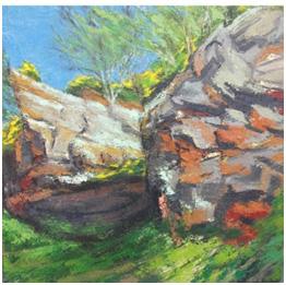 Runcorn Hill – Summer light by Shaun Smyth