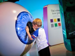 World Museum: Eye For Colour