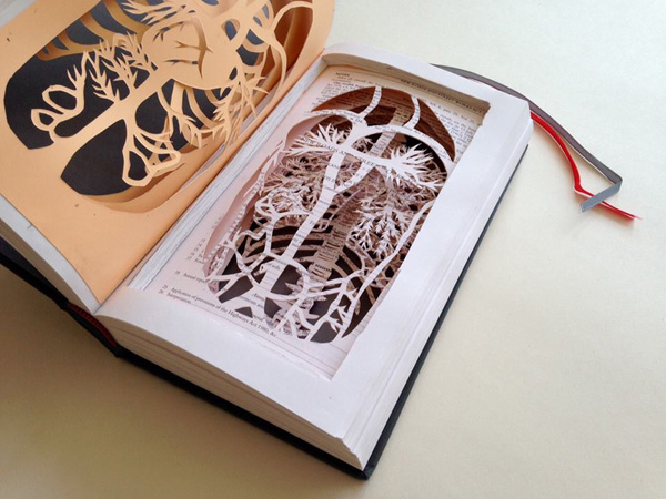 Liverpool Central Library: North West Book Art Group Meeting