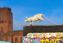 Super Rat by Faith Bebbington, Liverpool