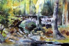 Bridge Over The Mawddach. Glynis Lawson