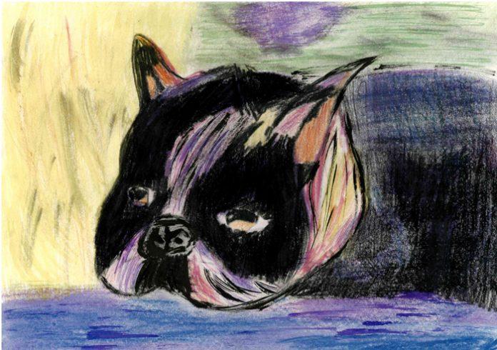 Boston Terrier by Aidan Owen. dot-art Schools at St George's Hall 2016