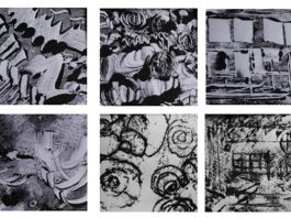 Bluecoat Display Centre: Monoprint workshop with Lynda Roberts