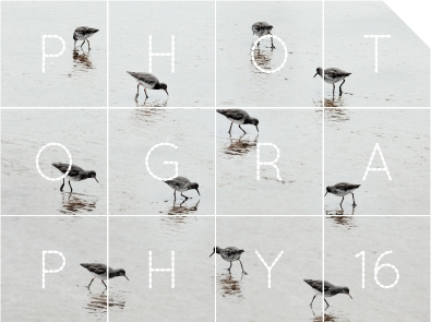 The Gallery at Bank Quay House: WCAF 16: Photography Open Exhibition