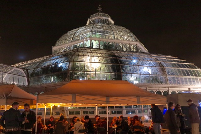 Sefton Park Palm House: Christmas with Artisans in the Palm House