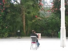 Palm House: dot-art: Drawing in the Palm House (10 Week Course) with Eimear Kavanagh