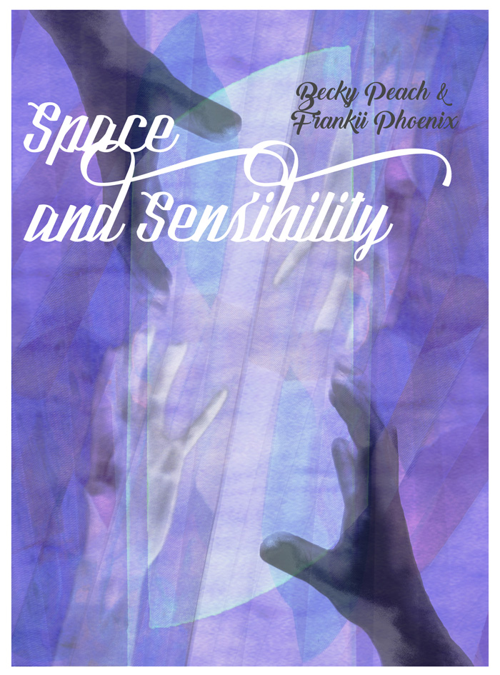Surtsey Projects: Space & Sensibility