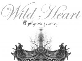 Chester Art Centre: Wild Heart, Andre Bielecki