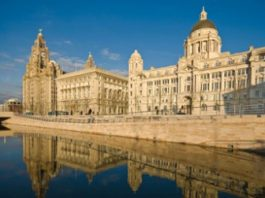 Bluecoat Display Centre: Liver Bird Walk