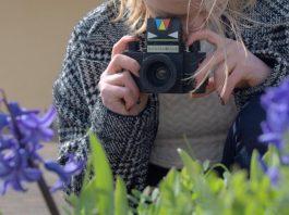 Sefton Park Palm House: dot-art: Beginners Photowalk - dot-art