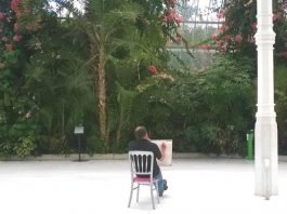 Sefton Park Palm House: Drawing in the Palm House (10 Week Course)