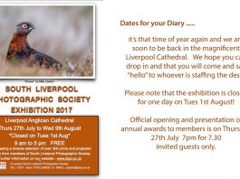 Liverpool Anglican Cathedral: South Liverpool Photographic Society Exhibition