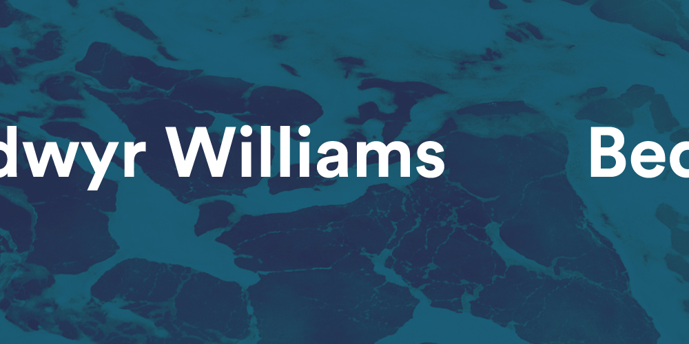 Storyhouse: Bedwyr Williams, Hypercaust
