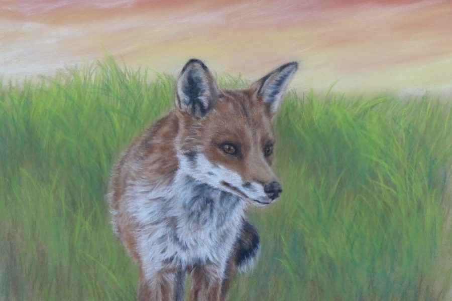 The Atkinson: Anita Young –Drawing Inspiration From The Fox