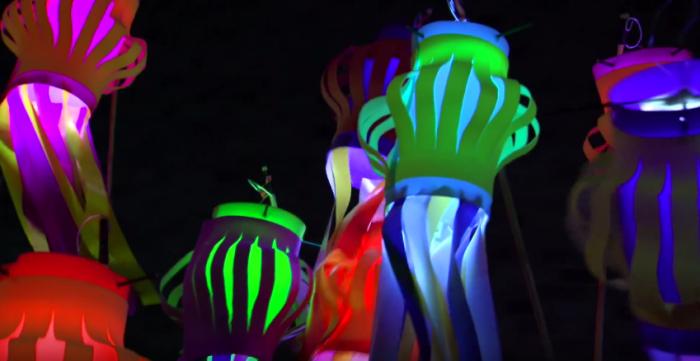 Mann Island: Illuminated Lantern Making Workshop